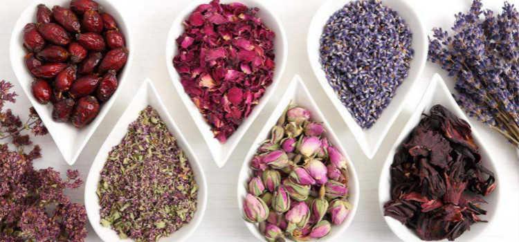 女人喝什么茶美容养颜减肥瘦身_什么茶女人长期喝最好