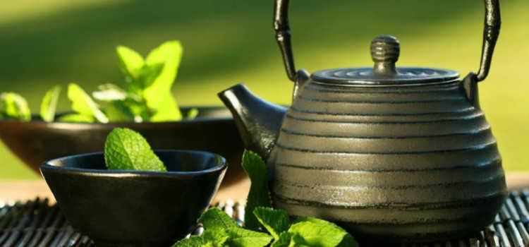 女人喝绿茶的好处和坏处_绿茶的功效是什么