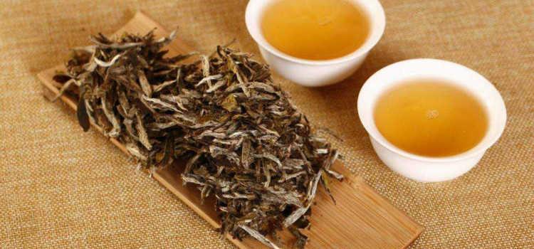 白茶的功效和作用及禁忌_喝福鼎白茶的功效与作用