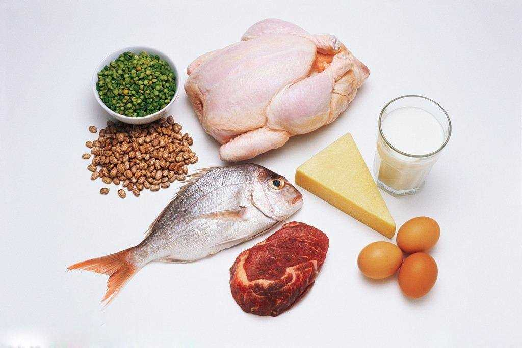 吃什么补蛋白质最快最好_十大高蛋白食物排行榜