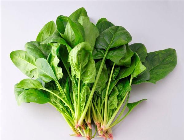 有助于生发的食物有哪些_生发食物排行榜