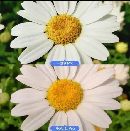 小米10和一加8哪个好_小米10和一加8哪个持久使用性好