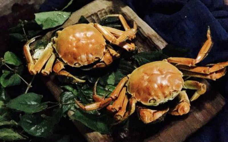 阳澄湖大闸蟹的吃法和做法_阳澄湖大闸蟹吃法步骤