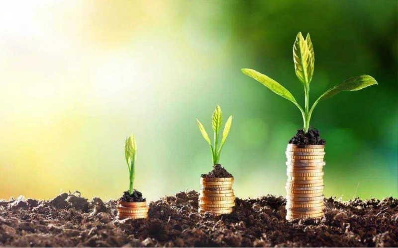世界寿险公司排行榜2020_人寿保险排行榜前10