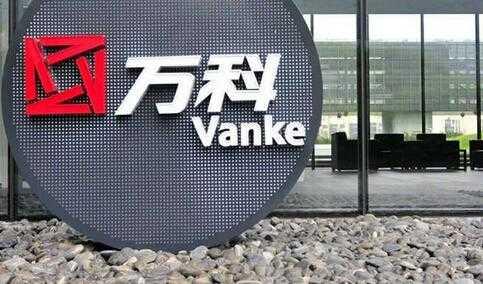 中国房地产公司排名_中国最大的房地产公司是哪个