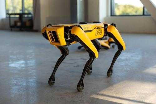 波士顿动力大黄狗机器人怎么样_波士顿大黄狗机器人好不好