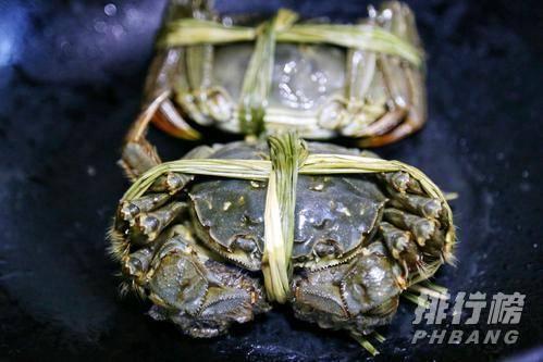 母螃蟹好还是公螃蟹好吃_九月份母蟹和公蟹哪个好吃