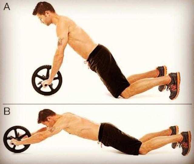 健腹轮多久能练出腹肌_健腹轮多久能有效果