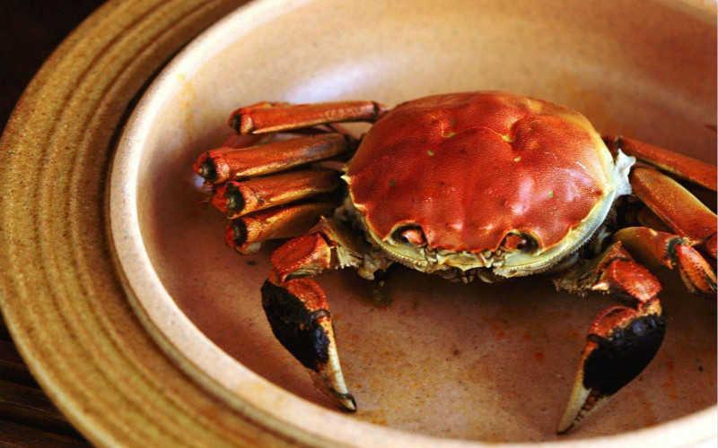 中国十大螃蟹排名_中国十大大闸蟹排行榜
