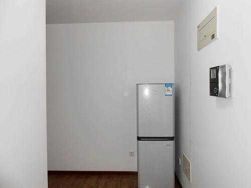 租房冰箱买什么牌子好_租房冰箱推荐