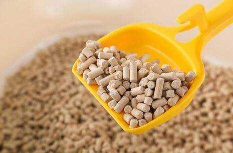 豆腐猫砂哪个牌子好_豆腐猫砂什么牌子最好用