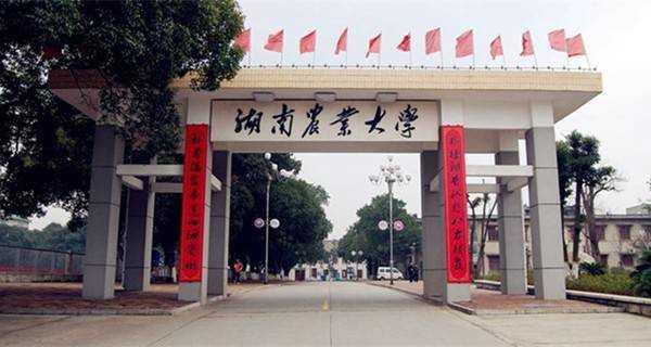 湖南一本大学排名_2020年湖南一本大学排名
