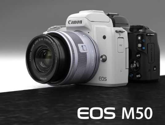 2020单反相机性价比排行_最值得入手的单反相机