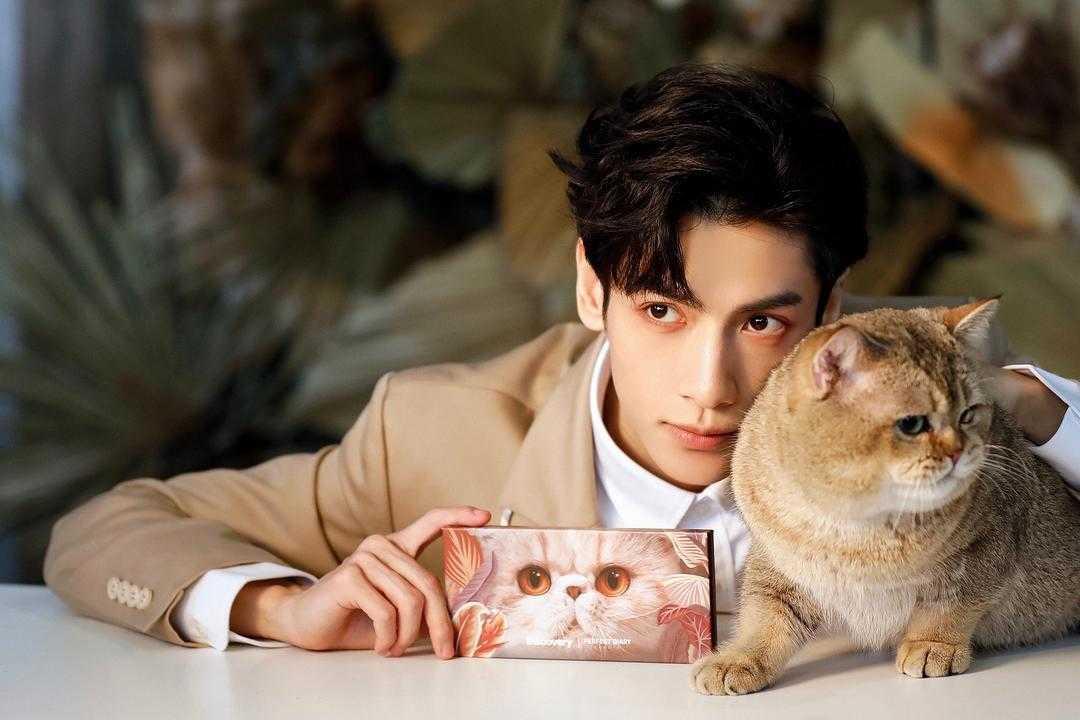 完美日记小猫盘适合肿眼泡吗?完美日记小猫盘适合新手吗