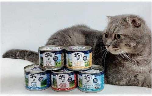 巅峰罐头幼猫可以吃吗_巅峰罐头几个月的猫能吃