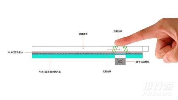 小米11怎么测心率_小米11怎测心率的方法