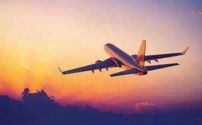 春节出行坐飞机哪种食物少吃_坐飞机哪种食物尽量少食用