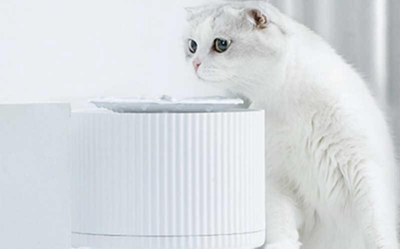猫咪智能饮水机哪种牌子好_猫咪自动饮水机推荐