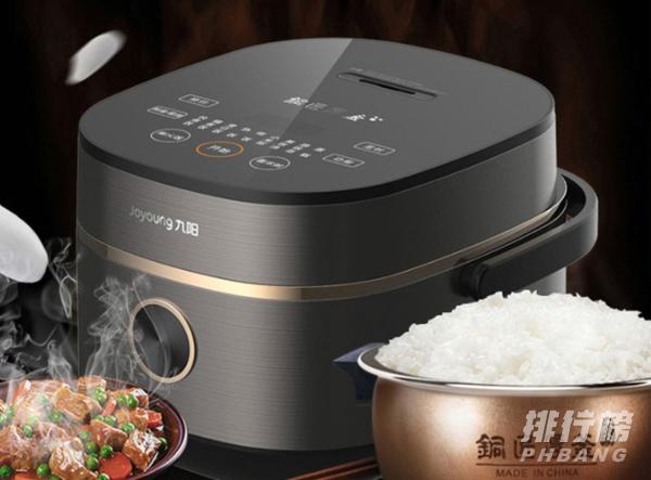 一个人用的电饭锅哪个款式好_一个人用的电饭锅推荐