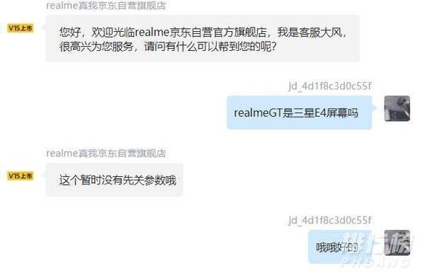 realme gt屏幕是e4吗_realme gt屏幕是e几?