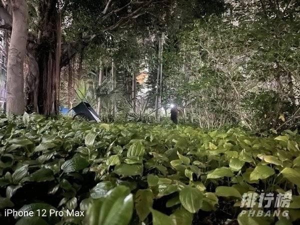 魅族18 pro拍照评测_魅族18pro夜拍评测