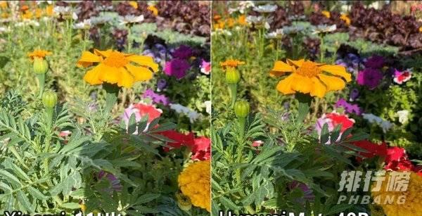 小米11ultra和华为mate40pro+拍照对比:哪个拍照效果好?