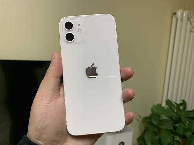 苹果11和苹果12的区别在哪_苹果11和苹果12对比