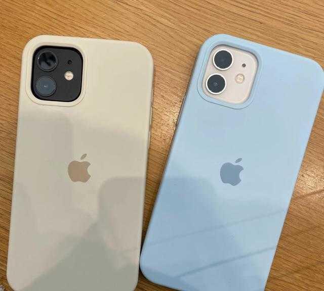 iphone12怎么调出3g_iphone12怎么手动设置3g