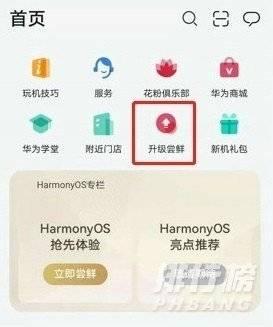 荣耀30pro怎么升级鸿蒙系统_荣耀30pro升级鸿蒙系统教程