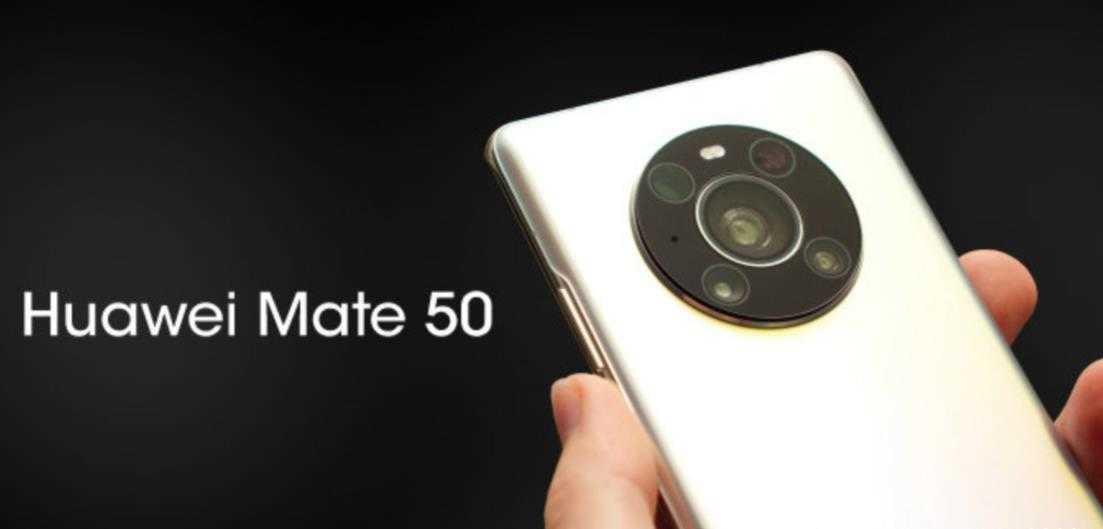 华为mate50今年会发布吗_华为mate50今年会不会发布