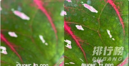 iPhone13Pro和iPhone12Pro实拍对比_哪款拍照效果更好